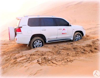 Virée dans le désert d'Abu Dhabi